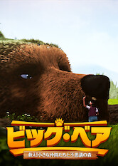 Search netflix The Great Bear